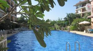 Зимовка на Пхукете.  2-й сезон, или Как вести хозяйство в Таиланде