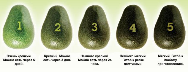 kak-vybrat-avokado