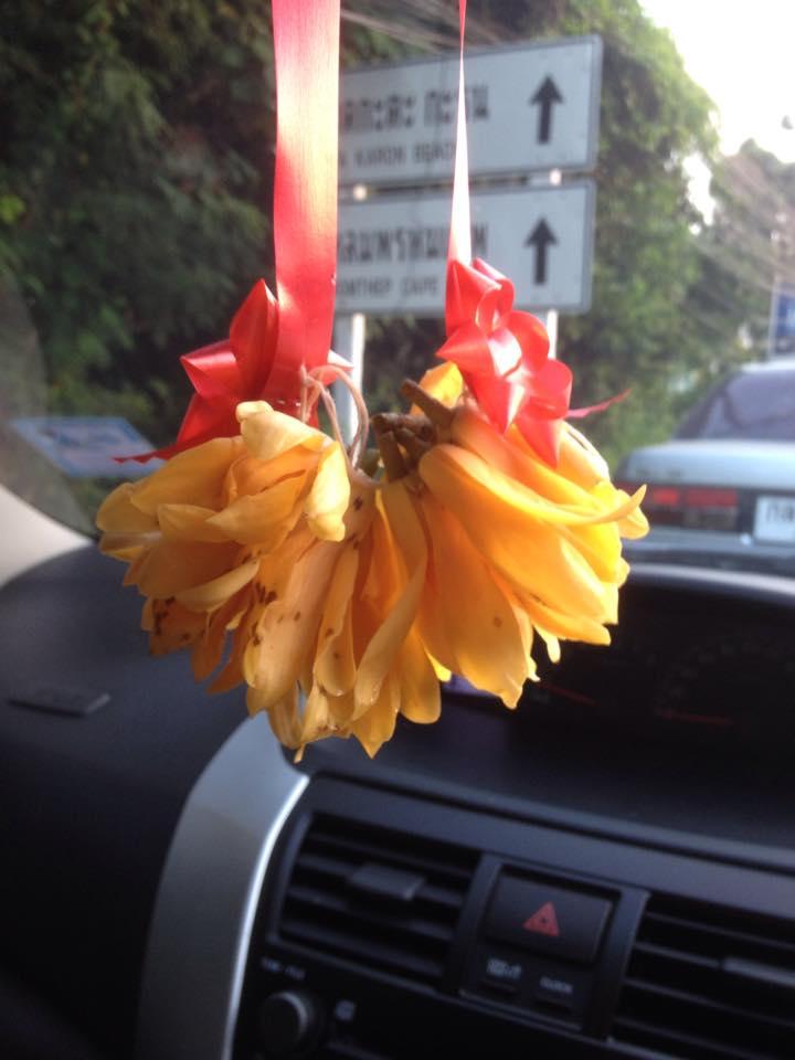 ароматизатор для авто из цветов иланга